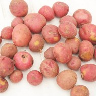 Nourishing Food For Your Kitchen: Potatoes