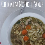 Busy Day Chicken Noodle Soup ~ The Recipe ReDux